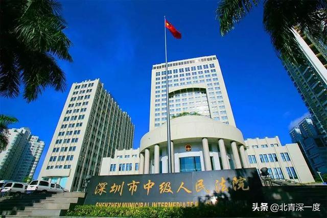 二审法院深圳市中院改判林华无罪